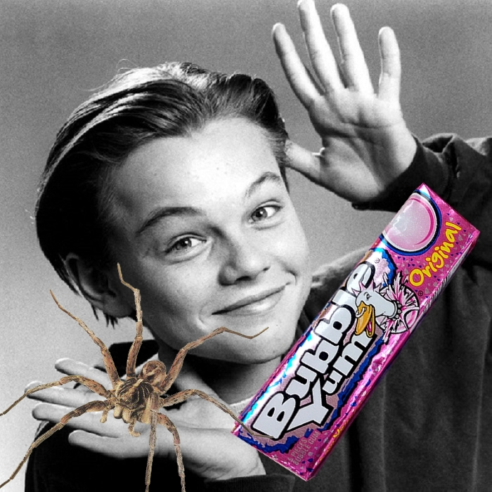 leonardo-dicaprio-bubble yum spider