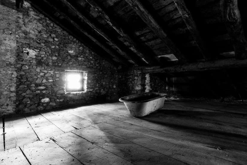 z attic 2