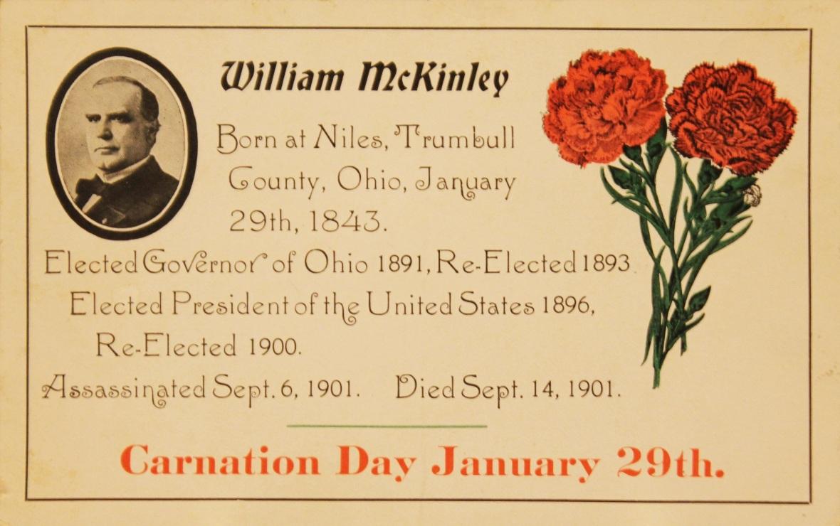 Carnation Day Part I