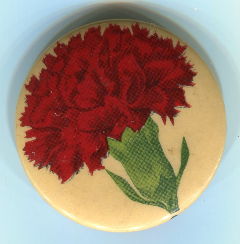 Carnation Day Pin 1
