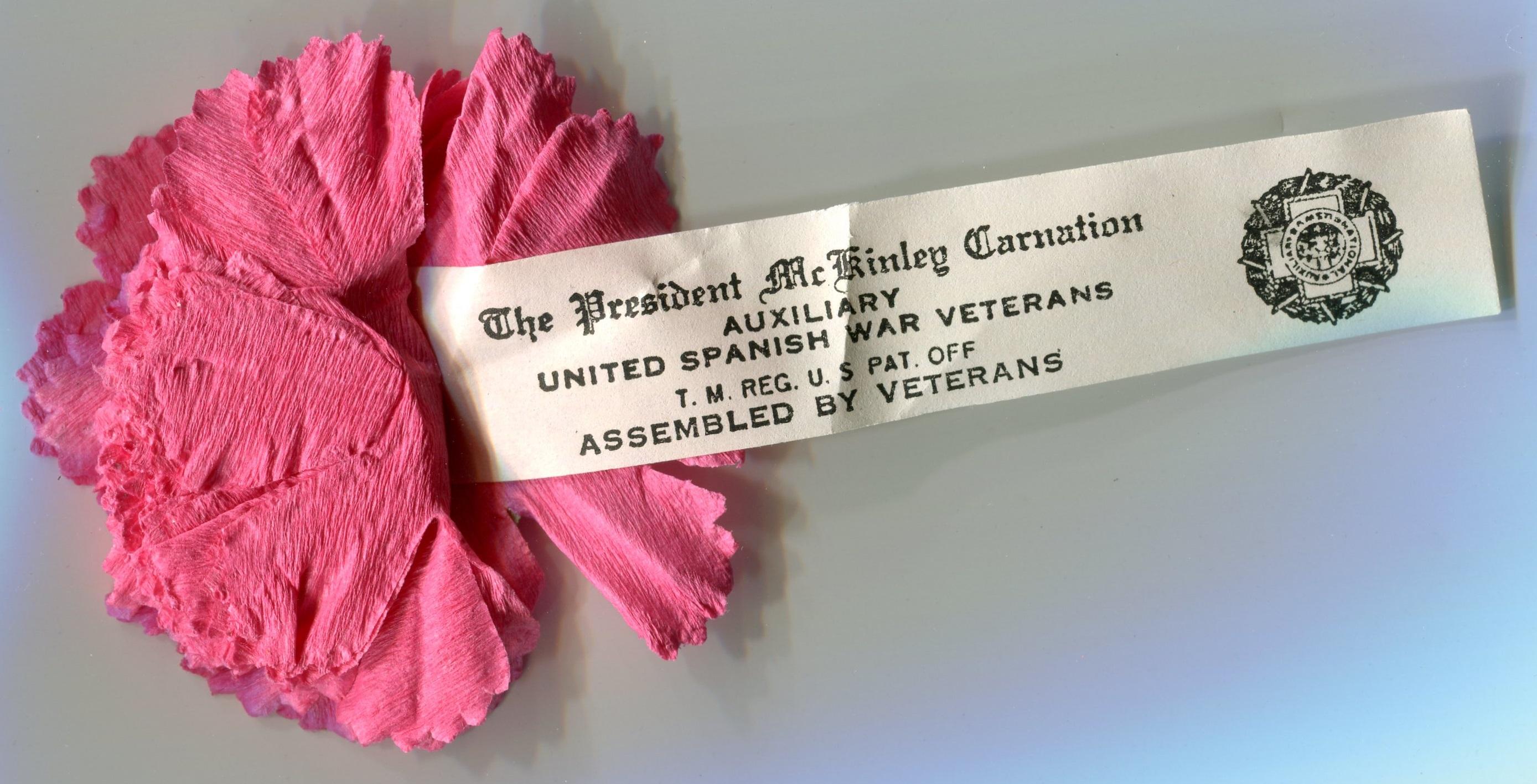 Carnation Day Pin 5