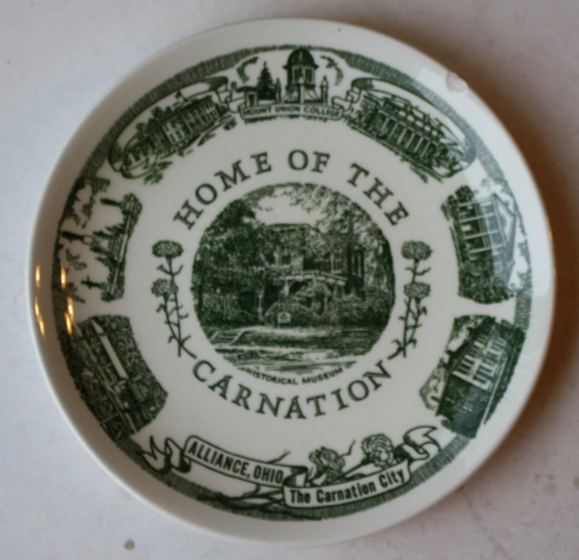 Carnation plate 1