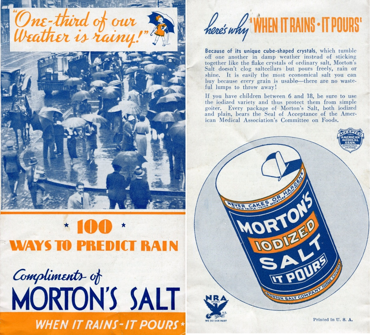 Morton's article image